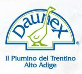 new arrival 1c454 6a225 Piumino in piuma d'oca Tirolo Warm Daunex matrimoniale